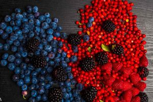 Resveratrol Protects Against Vascular Dementia and More