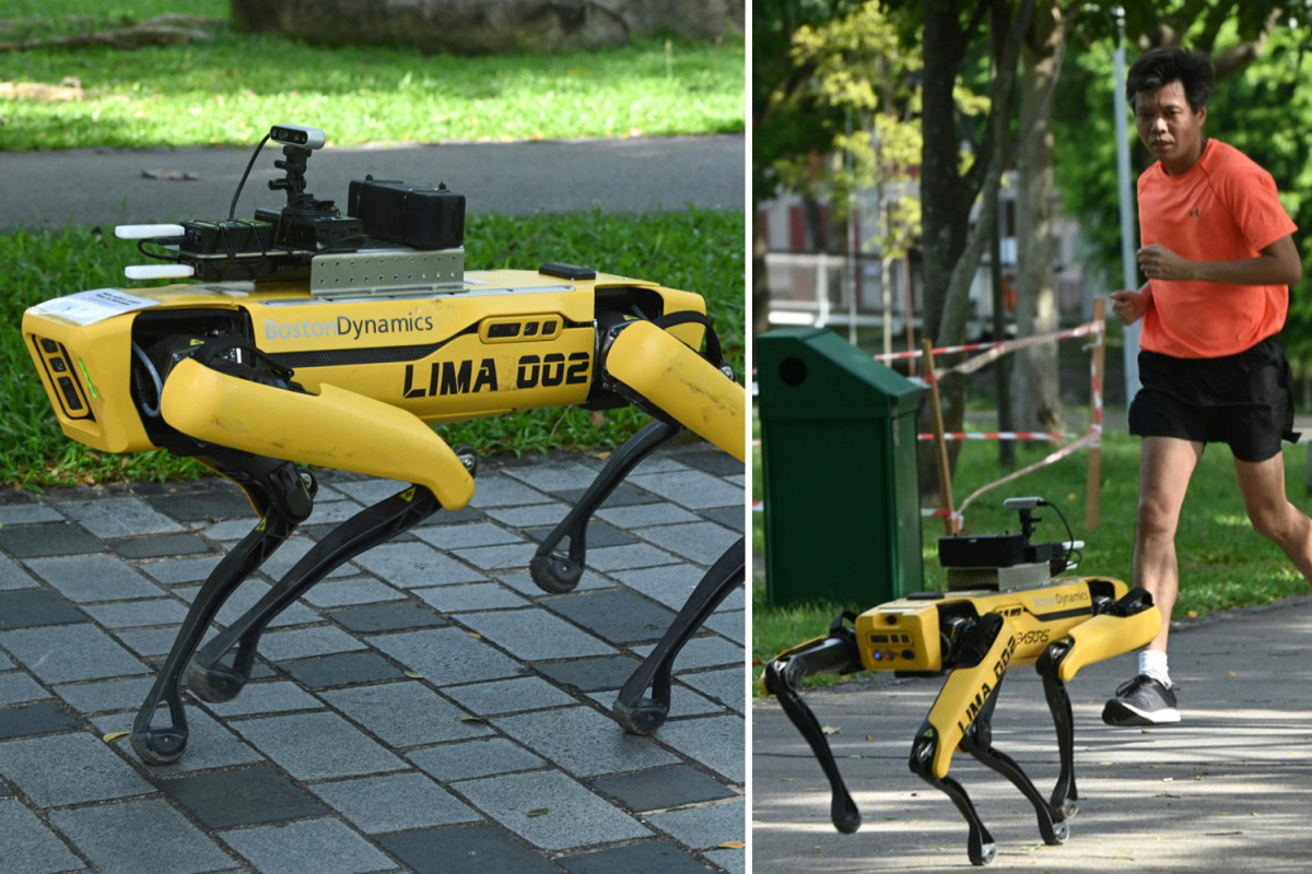 Robot dog used to enforce social distancing in Singapore parks during coronavirus lockdown