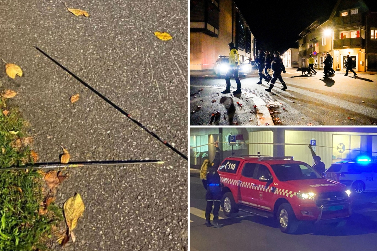 Norway bow and arrow attack: Man held after 5 people killed and more injured including 'off-duty police officer'