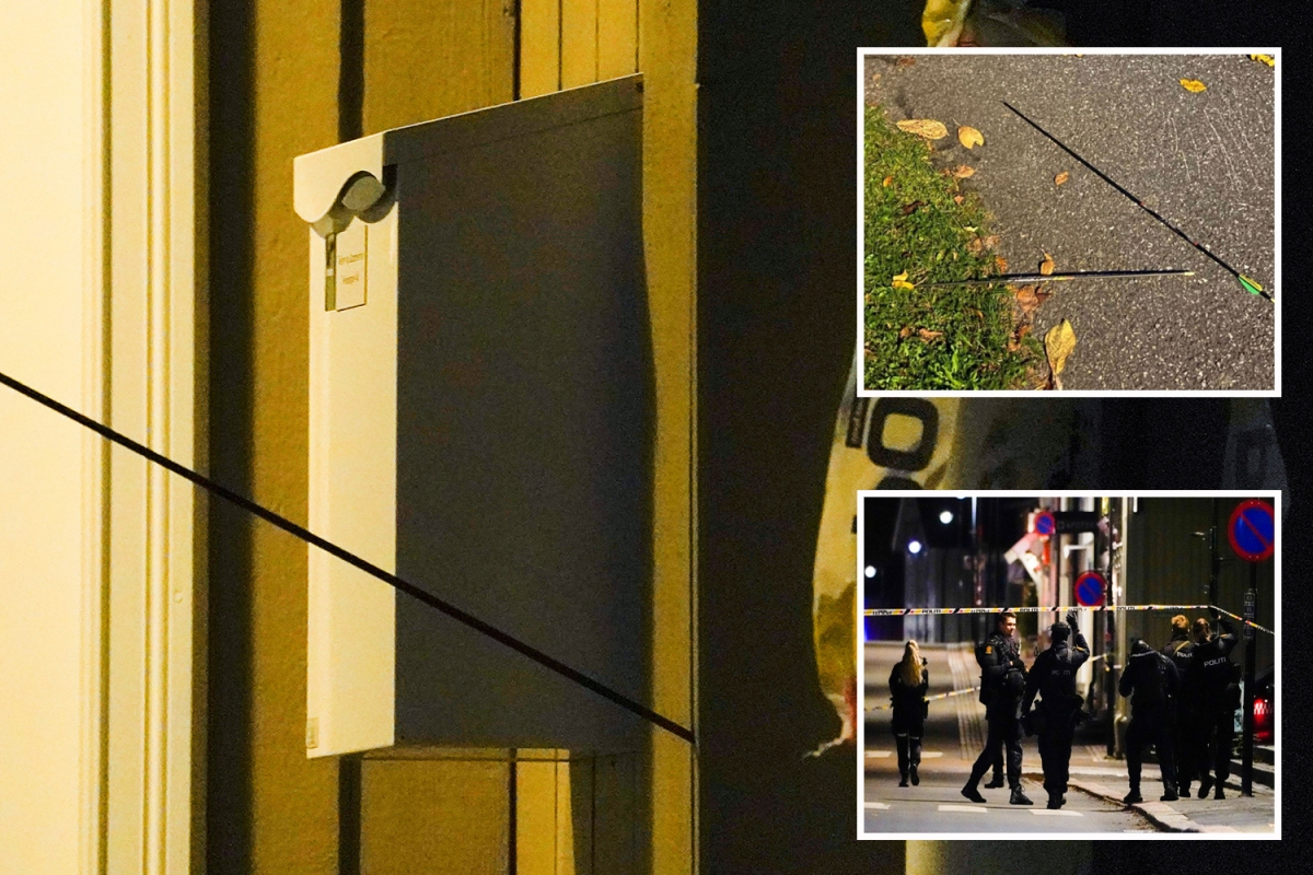 Norway bow attack –  Witnesses heard woman's 'death cries' as four women & a man murdered and cop critical